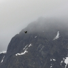 halalb010809lindenowfjord-002w.jpg