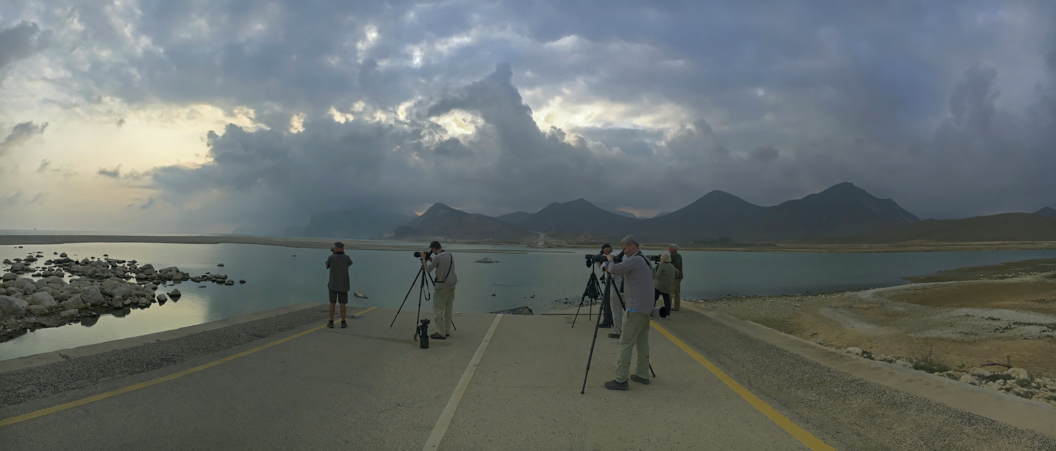 Last hour of daylight at Al Mughsayl, Dhofar, south Oman. This image shows the kind of untypical weather, which prevailed in early December. Note also the main coastal road to Yemen, which was washed into the sea following flash floods after cyclones Mekunu and Luban in May and October 2018, respectively (see impressive footage on Mekunu's visit to Salalah on YouTube). More about our birding around Salalah in the blog and please do also check the new galleries on Ghana and from this trip to Oman.